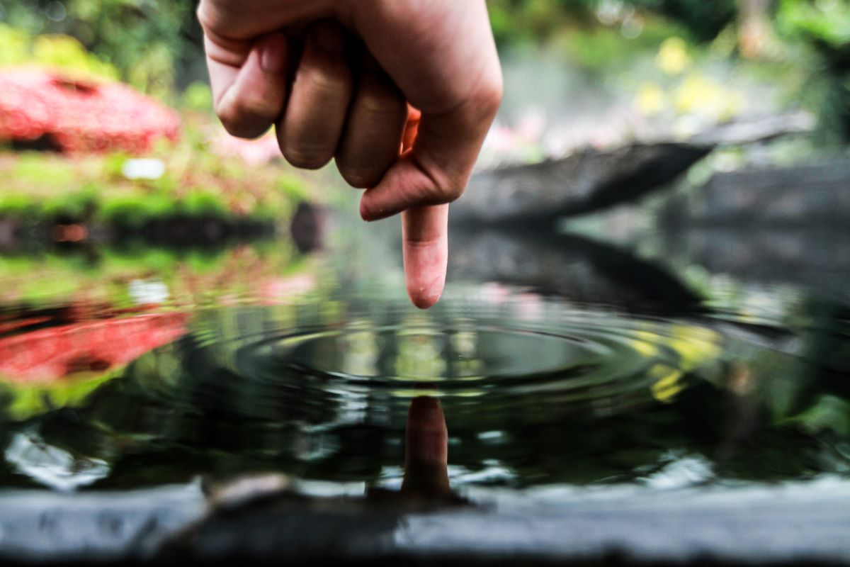 finger touching pond water